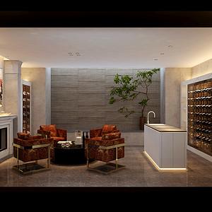 碧桂园现代简约风格酒窖装修案例效果图