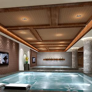 星河丹堤 现代中式家装效果图 地下