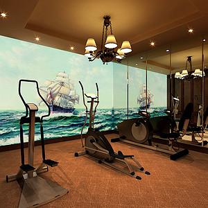 玛歌庄园法式新古典风格健身区装修效果图