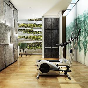 富力津门湖混搭风格健身房装修效果图