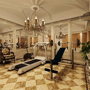 紫乐府法式风格健身房装修效果图-其他装修效果图 其他装修图片 其他
